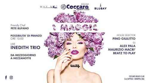 COCCARO BEACH CLUB eventi Monopoli eventi Bari