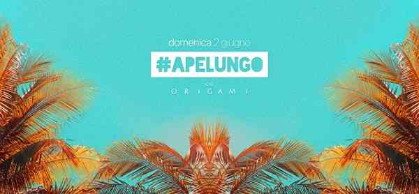 Apelungo c/o Origami // Let The Summer Begin // 2.06 eventi Iseo eventi BS